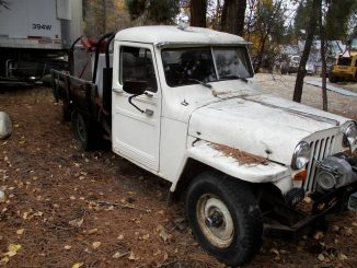 Willys Jeep For Sale in Montana: North America Classifieds Ads
